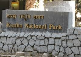 TOUR TO KANHA NATIONAL PARK