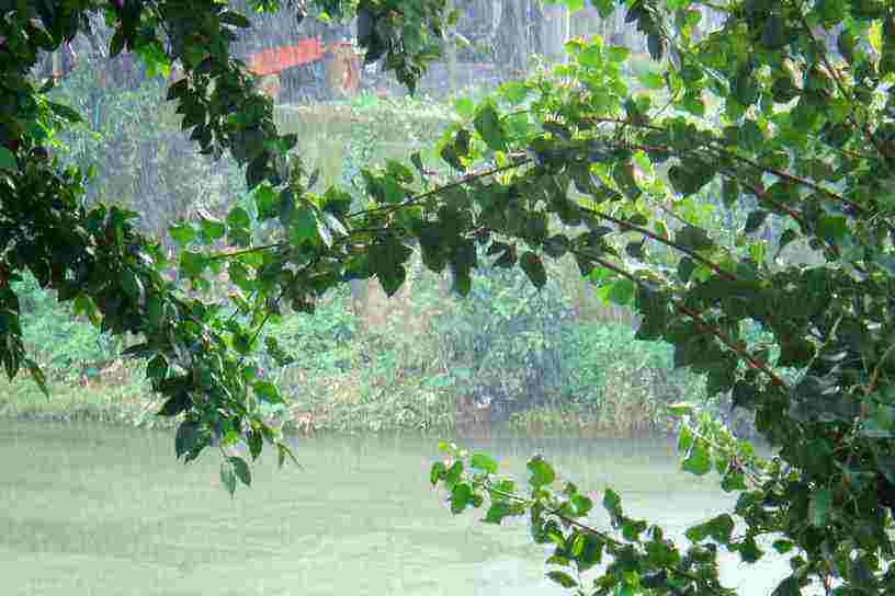 Monsson Kerala Weather