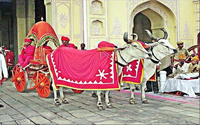 Teej Festival Savari